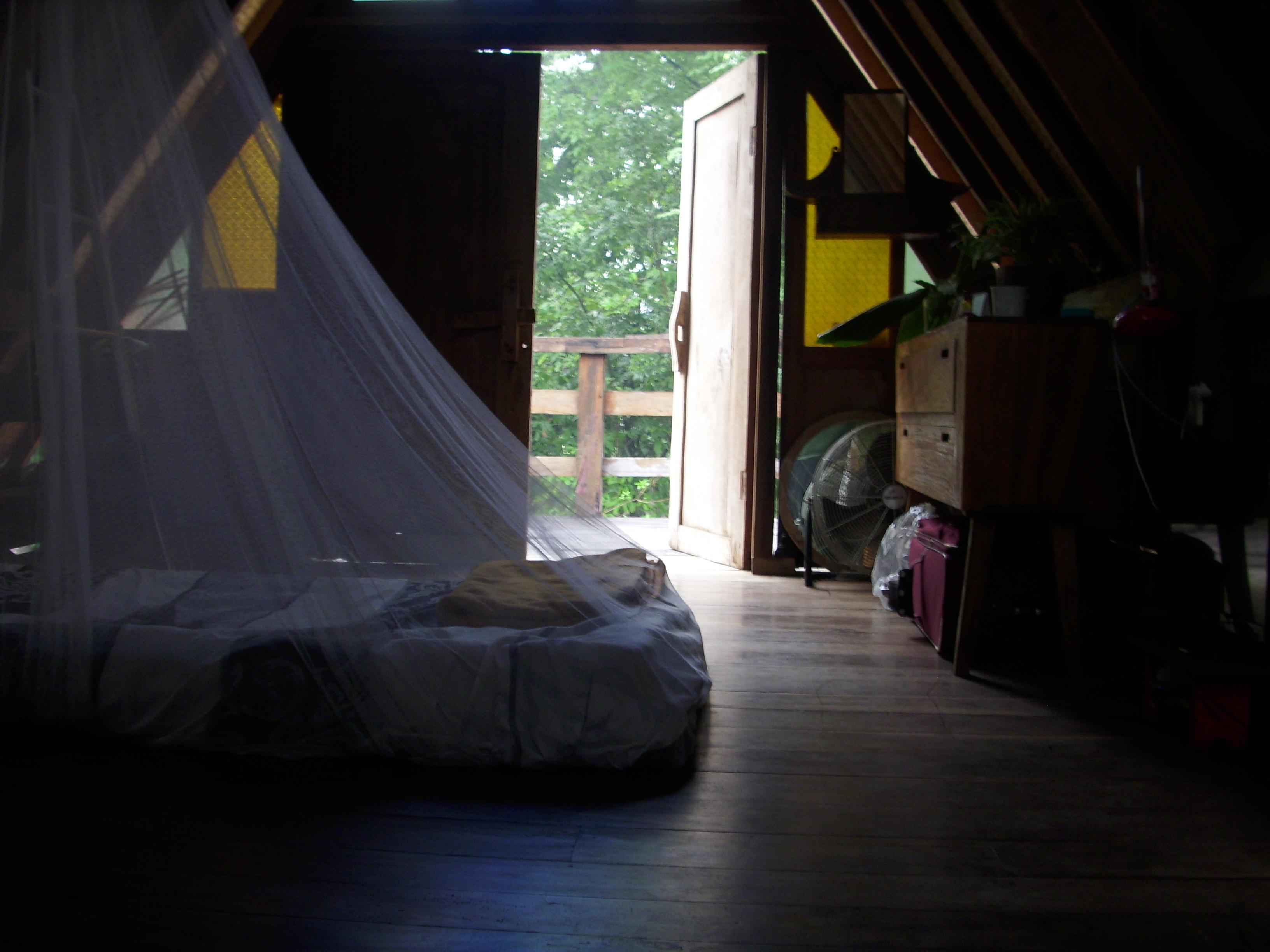 Mücken Im Zimmer Loswerden