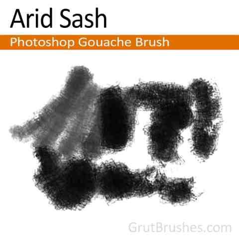 Photoshop Gouache Brush for digital artists 'Arid Sash'