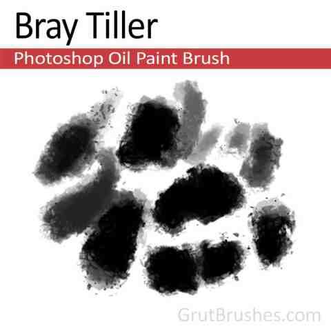 Photoshop Oil Brush for digital artists 'Bray Tiller'