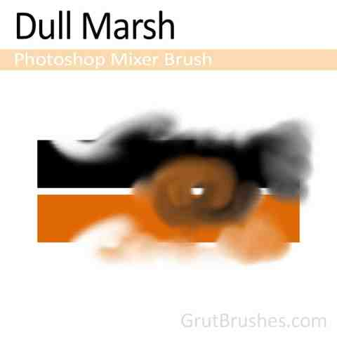 Dull-Marsh-Photoshop-Mixer-Brush