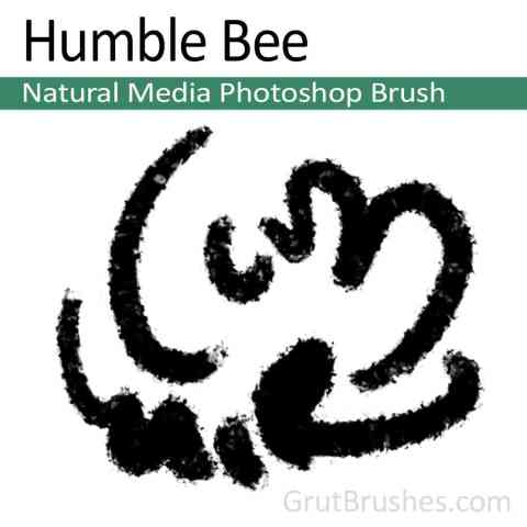 Photoshop Natural Media Brush 'Humble Bee'