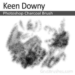 'Keen Downy' Photoshop Charcoal Brush, digital artist's toolset