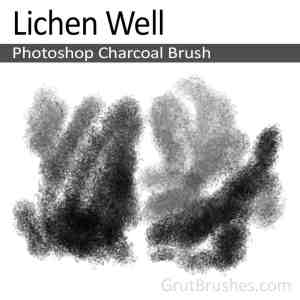 'Lichen Well' Photoshop Charcoal Brush