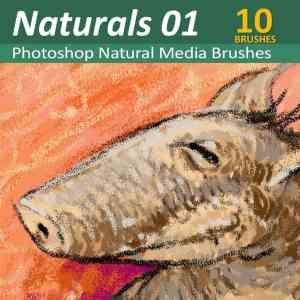 10 Natural Media Photoshop Brush Toolsets for Digital Artists