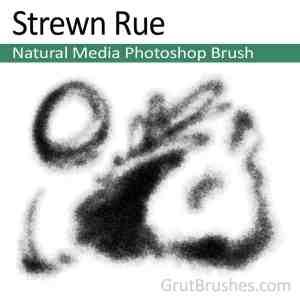 'Strewn Rue' Photoshop Natural Media Brush for digital artists