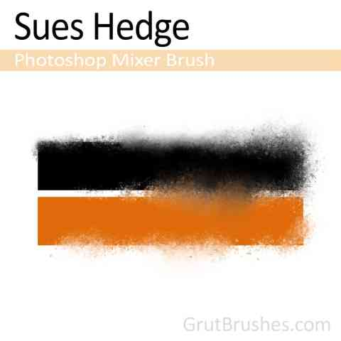 Sues-Hedge-Photoshop-Mixer-Brush