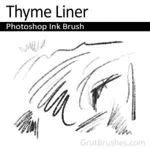'Thyme Liner' Photoshop Ink Brush for digital artists