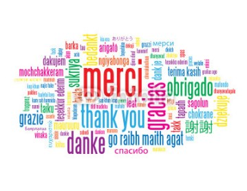 merci-lebigre-2014-municipales-vence