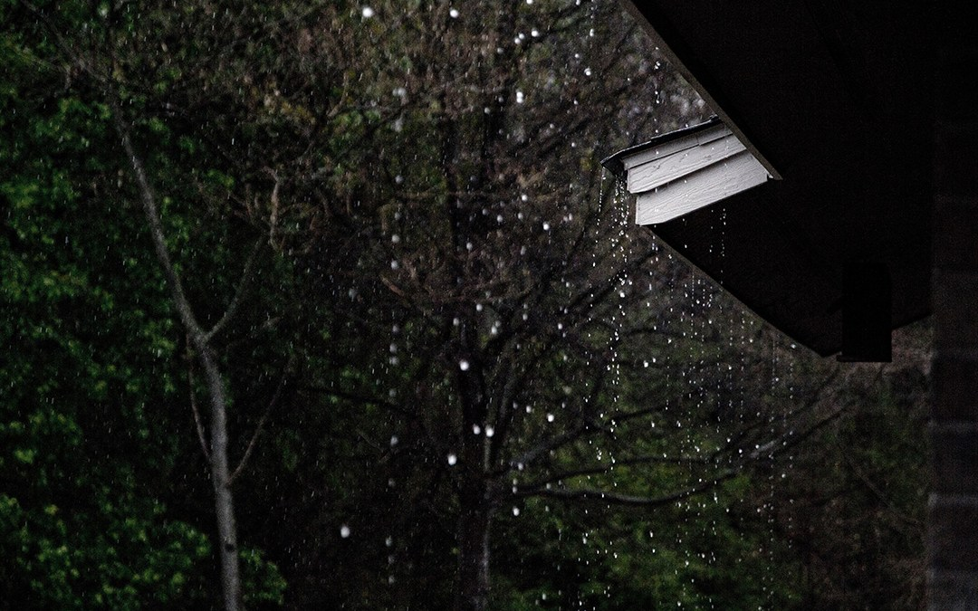 rain and silence
