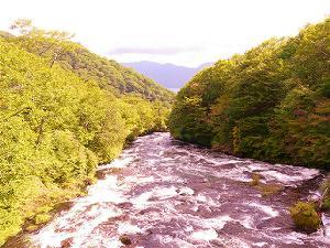 日光竜頭の滝紅葉4