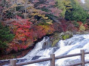 日光竜頭の滝紅葉5