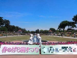 前橋バラ園02