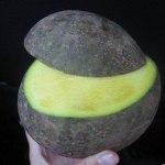 Необычный фрукт бам-балан