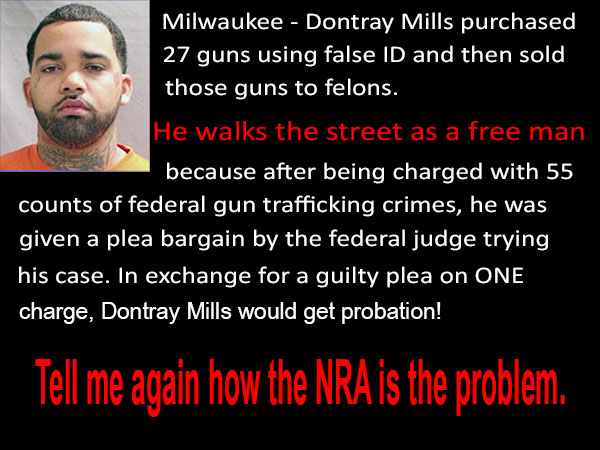 NRA Plea Bargain