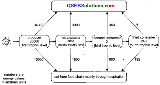 GSEB Solutions Class 10 Science Chapter 15 Our Environment