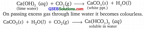 GSEB Solutions Class 10 Science Chapter 2 Acids, Bases and Salts