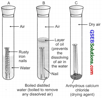GSEB Solutions Class 10 Science Chapter 3 Metals and Non-metals