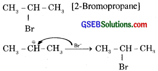 GSEB Solutions Class 11 Chemistry Chapter 13 Hydrocarbons 22