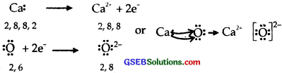 GSEB Solutions Class 11 Chemistry Chapter 4 Chemical Bonding and Molecular Structure img 25