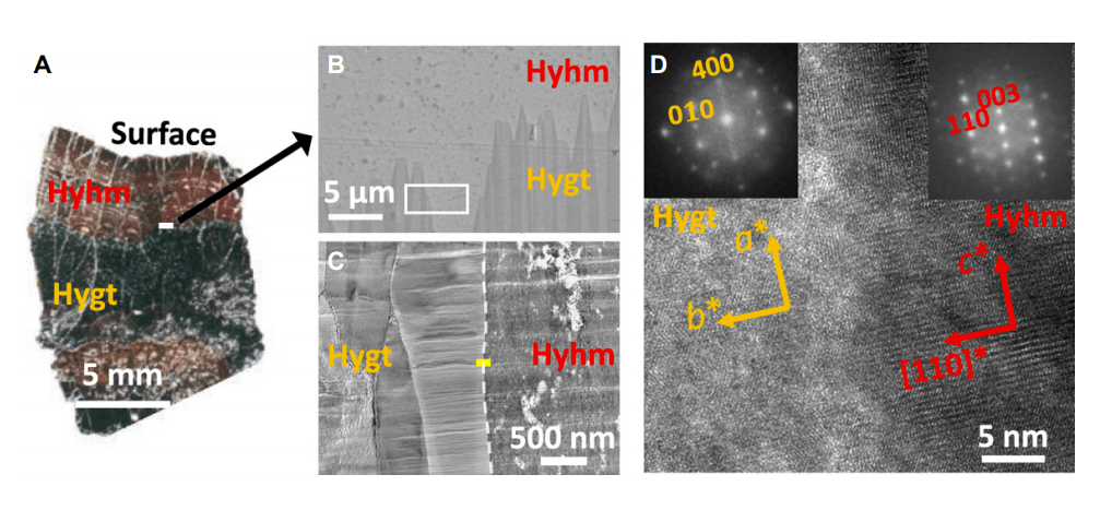 Superhydrous hematite and goethite: A potential water reservoir in the red dust of Mars?