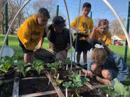 """Growing Minds. The Good Shepherd """"Lil' Acre"""" garden, located on the west end of campus, offers students a unique, hands-on environmental learning experience."""