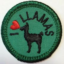I Love Llamas, Lone Star Council