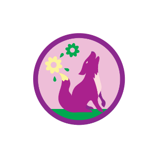 badge explorer girl scouts
