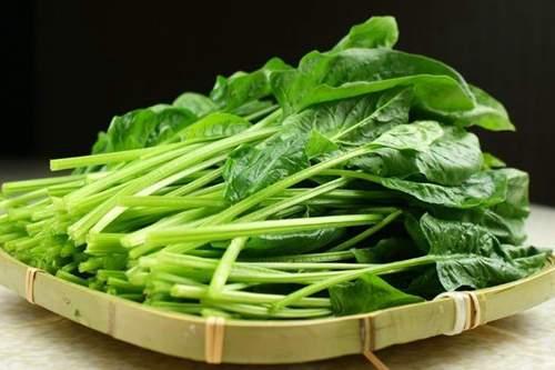 菠菜不能和什么一起吃 菠菜的食用禁忌_百度知道