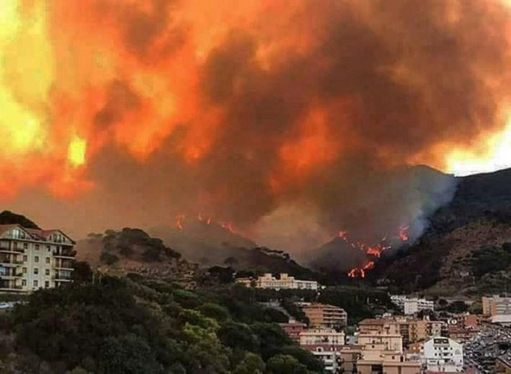 Brucia ancora la Sicilia, canadair in azione a Troina: incendi a Catania e  Trapani - Gazzetta del Sud