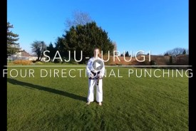 Four Directional Punching & Blocking