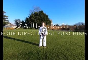 Four Directional Punching & Blocking