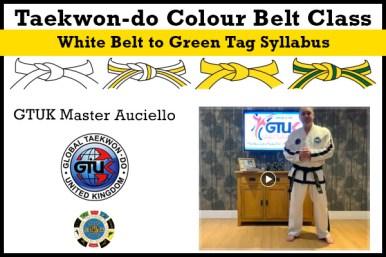 Taekwon-do Colour Belt Classes