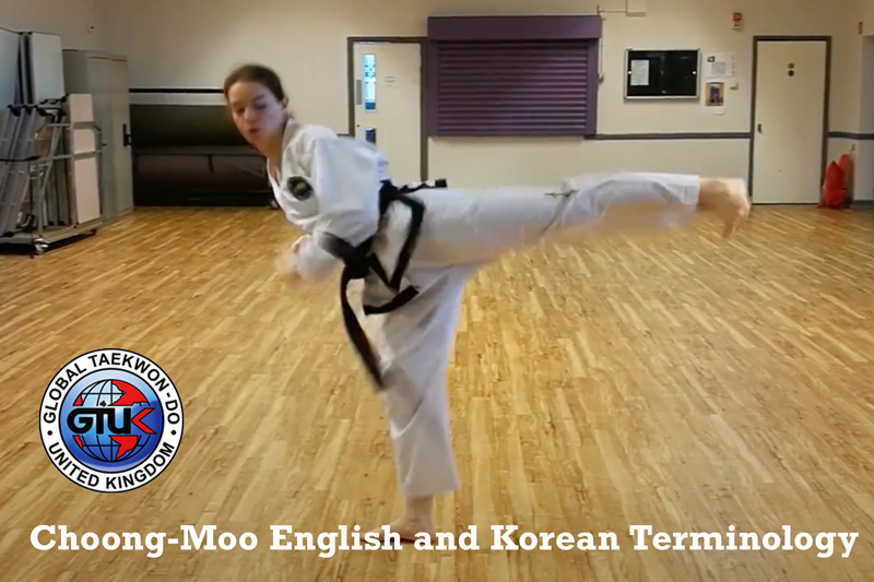 Moves of Choong-Moo in English and Korean