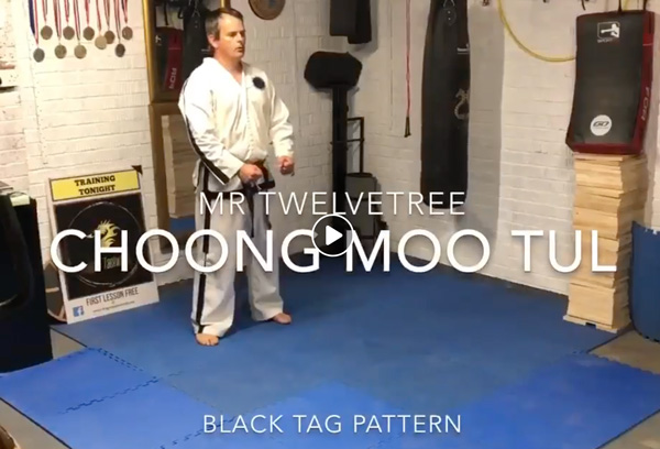 Choong-Moo Live Tutorial
