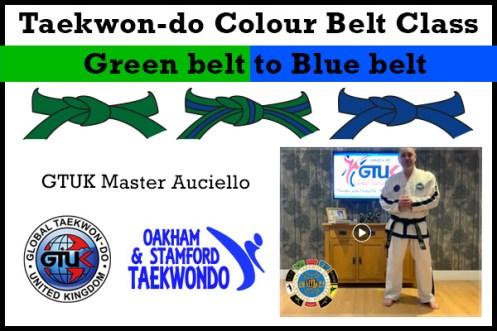 Blue belt Syllabus