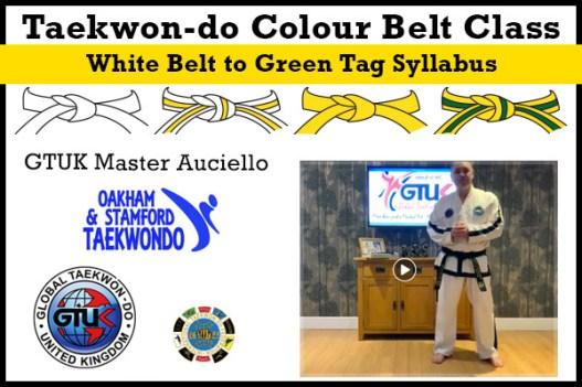 Taekwon-do Colour Belt