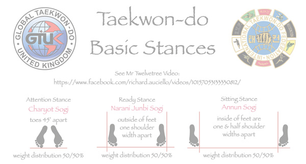 Taekwon-do Basic Stances