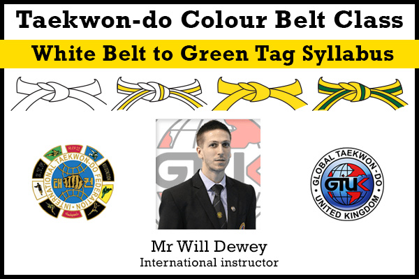 White belt, Yellow tag, Yellow belt, Green tag Syllabus