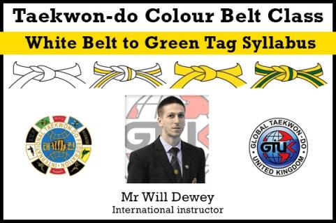 White belt, Yellow tag, Yellow belt, Green tag Syllabus