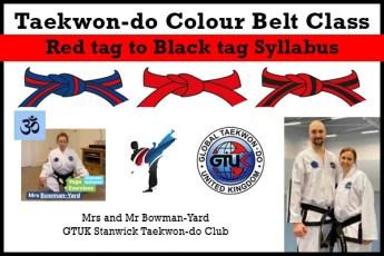 Taekwon-do-Colour-Belt-Classes-RT-BT
