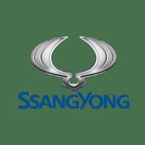 DAMOS SsangYong 1 pngegg11