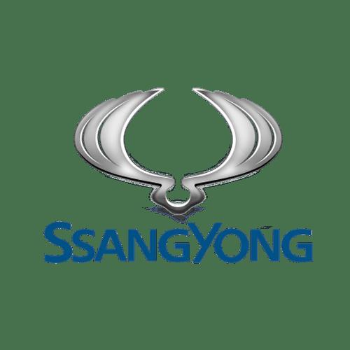 DAMOS SsangYong DCM 3.7 1 pngegg11