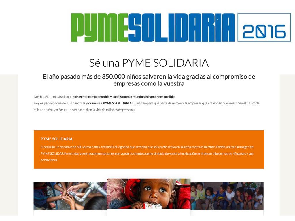Imagen web PYME Solidaria ONG