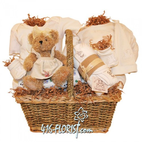 Newborn Baby Gift baskets