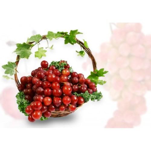 Sympathy basket idea, sympathy fruit basket, edible arrangement, premium Canadian fruit delivery