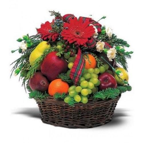 Harvest Fruit