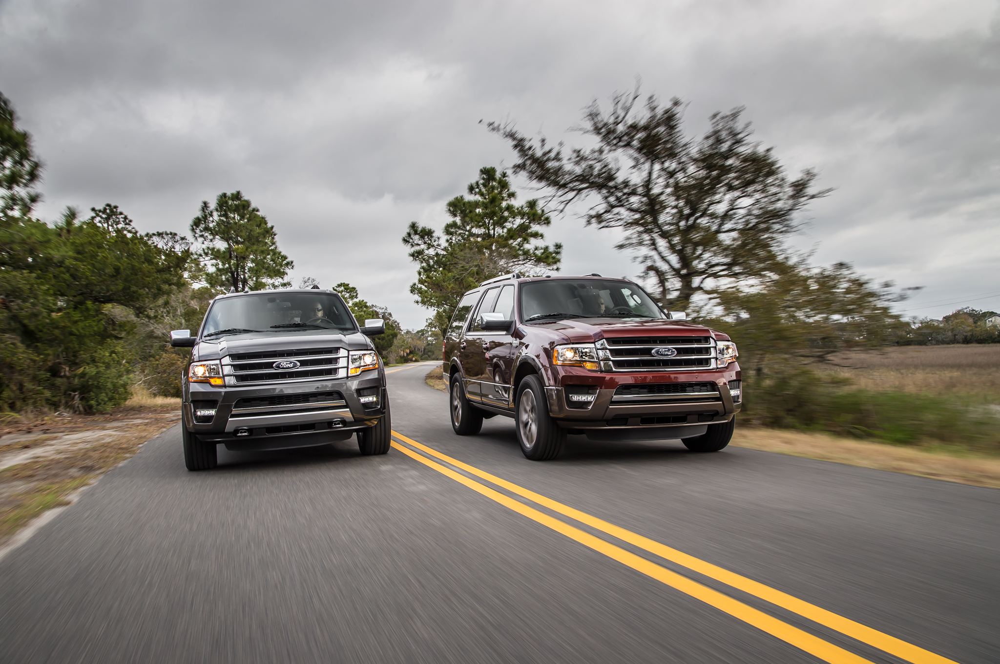 2015 Ford Expedition Drive