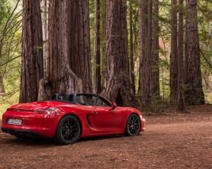 2015 Porsche Boxster GTS Rear Side Photo