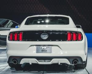 2015 Ford Mustang 50th Anniversary Edition Rear End