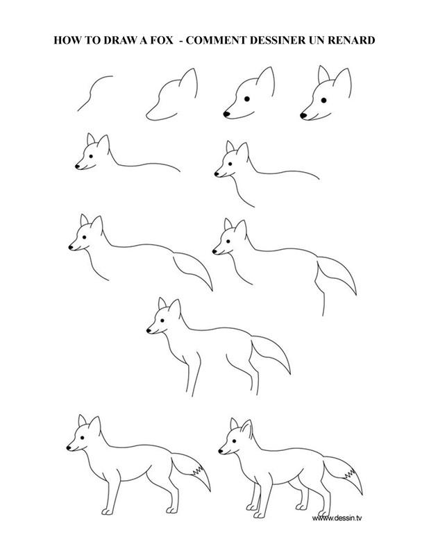 Comment Dessiner Un Renard : comment, dessiner, renard, COMMENT, DESSINER, RENARD